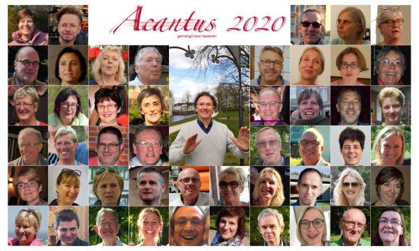 Acantus 2020